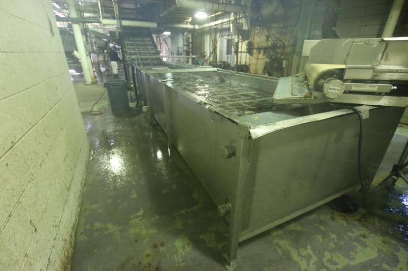 "Approx 30' L x 4'-6"" W Vegetable Wash Tank (Water Bath) , Cleated SS Conveyor, Inclines into Lyco Scrubber"