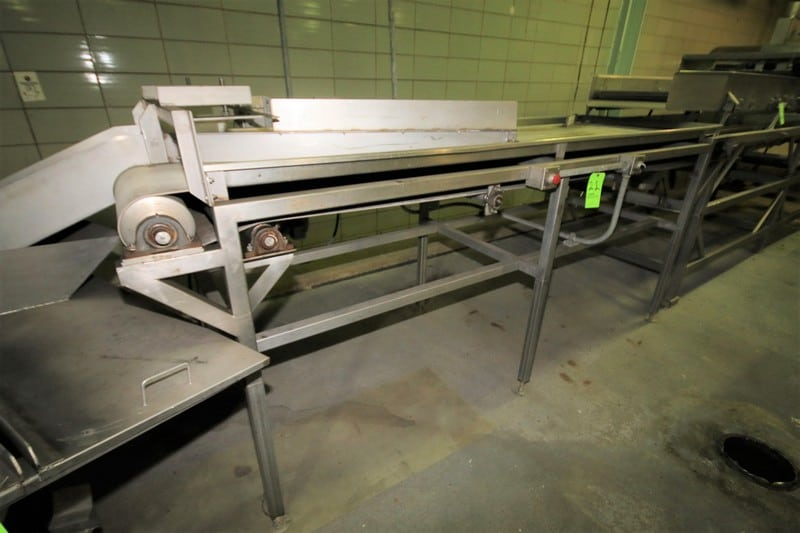 "~22 ft. 9"" L S/S Inspection Conveyor System, with 35-1/2"" W Belt with Lane Divider, Electric Drive, 50"" H S/S Leg Supports & Square D Switch"