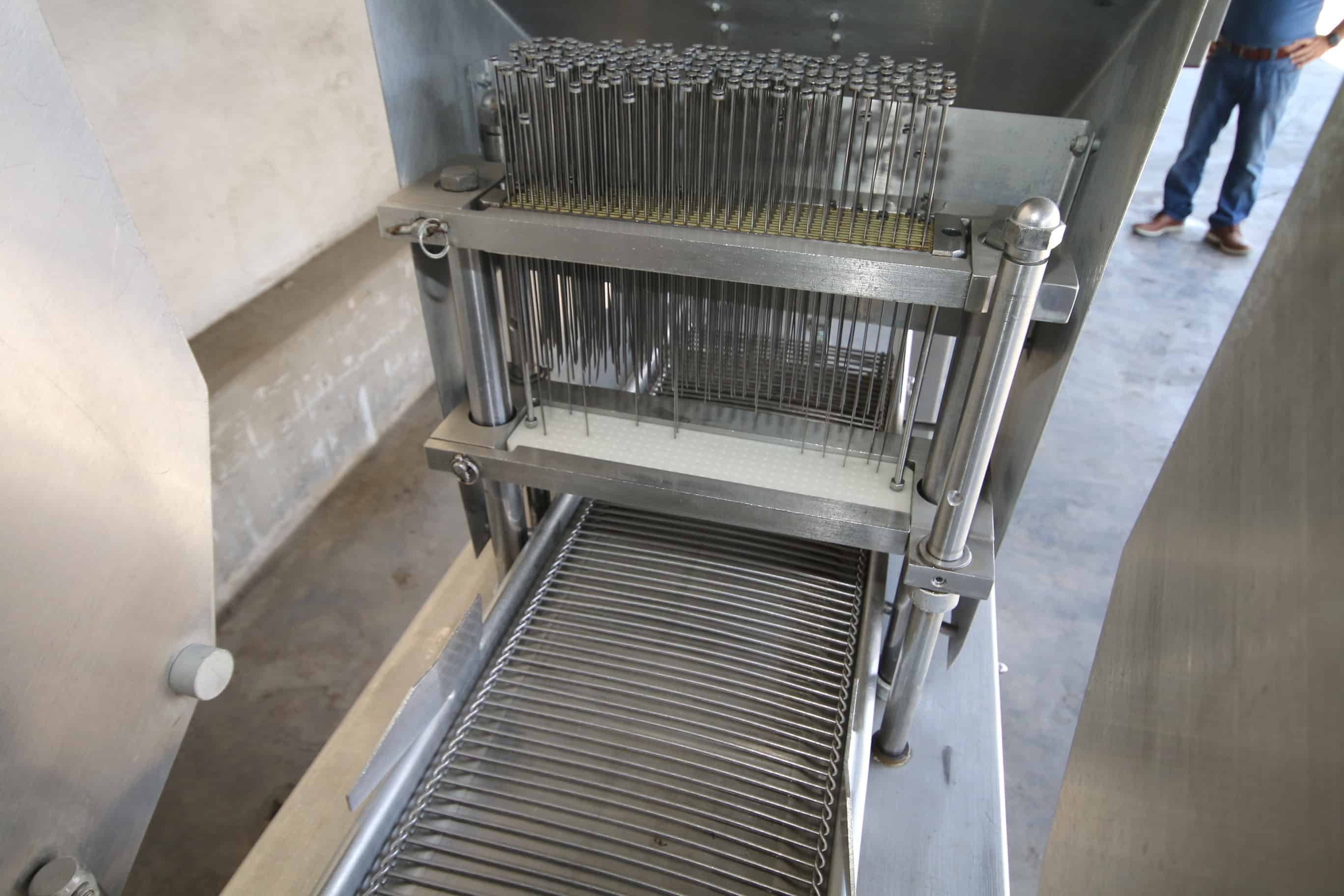 "Ross Tenderizer, with Aprox. 12"" W Infeed/Outfeed S/S Conveyor, Tenderizing Station, Mounted on S/S Frame"