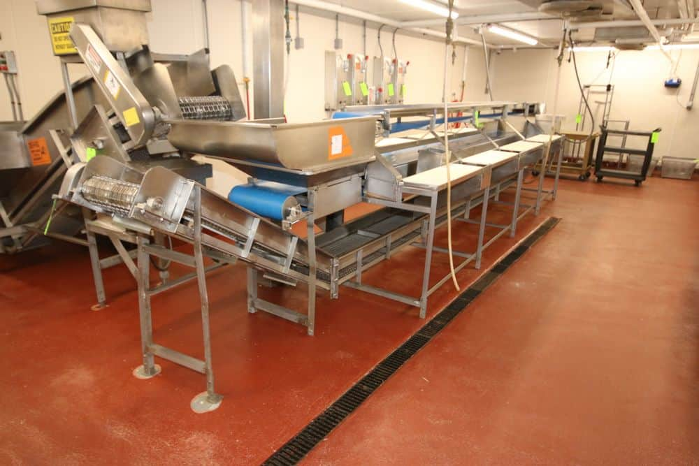 """S/S Triple Conveyor Fish Filleting Station, with Top Filet Conveyor, Aprox. 220"""" L x 12"""" W Belt, with Middle Raw Belt, Aprox. 128"""" L x 12"""" W Belt, & S/S Mesh Discharge Belt with Incline Section, with S/S Cleats, Aprox. 288"""" L x 14"""" W Belt, with Aprox. 20-1/2"""" S/S Cleat Spacing, with S/S Holding Areas, (6) Cutting Stations, and S/S Discharge Chutes to Discharge Conveyor, with (3) S/S Wall Mounted Safety Switches (LOCATED IN GLOUCESTER, MA)"""